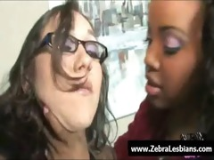 zebra gals - ebon lesbo hotties have a fun