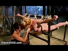 immobilized honey with sticky pads drilled by